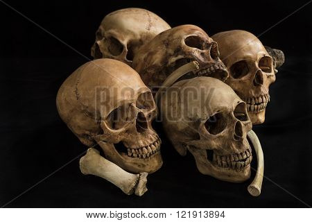 Human skull and bones genocides concept and horror darkness