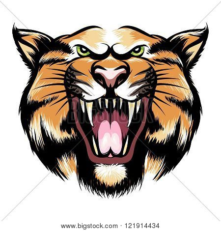 Tiger head icon. Hand drawn roaring tiger head. Vector illustration
