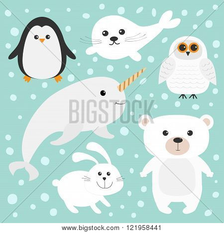 Arctic polar animal set. White bear owl penguin Seal pup baby harp hare rabbit narwhal unicorn-fish. Kids education cards. Blue background with snow flake Isolated. Flat design. Vector illustration