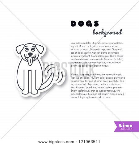 St. Bernard dog background.