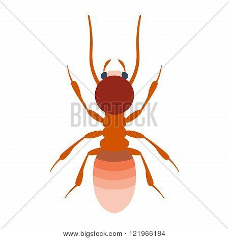 Termite vector illustration. Termite isolated on white background.Termite flat illustration. Termite