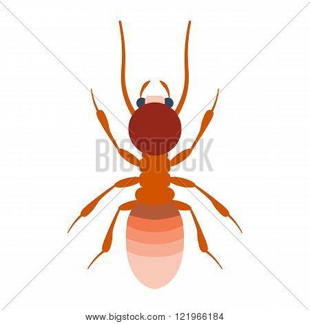 Termite vector illustration. Termite isolated on white background.Termite flat illustration. Termite