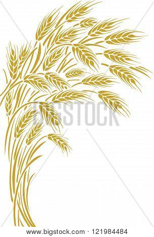 Vector illustration of a few ripe wheat ears. Can be used as frame corner or border element.