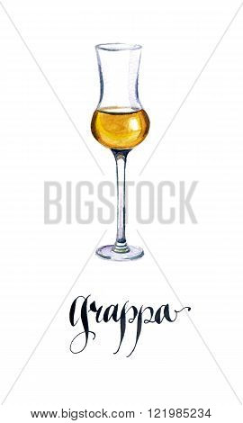 Glass of Italian grappa brandy watercolor hand drawn - Illustration