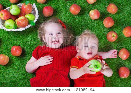 Little girl and baby boy play peek a boo holding fresh ripe apples. Kids eat snack relaxing on a lawn. Children summer fun on a farm picking healthy fruit.