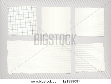 Pieces of torn white lined, squared blank notebook paper sticked on gray striped diagonal background