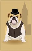 English bulldog and  symbol of England. Vector illustration. poster