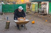 Country man doing daily work (meal screen fines) at the homestead - central Ukraine, Europe poster