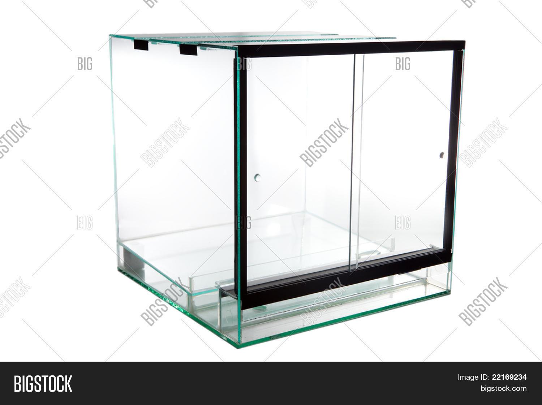 Terrarium Glass Image Photo Free Trial Bigstock