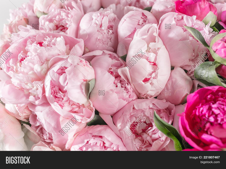 Elegant Bouquet Peonies Pink Color Image Photo Bigstock
