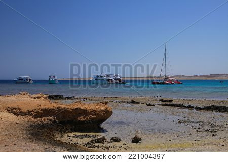 MARSA ALAM,EGYPT - MARCH 26,2017: snorkeling trip from Port Ghalib Marina to Marsa Mubarak,on of the most beautiful places in the Marsa Alam region, where can be seen Dugong (sea cow) and sea turtles