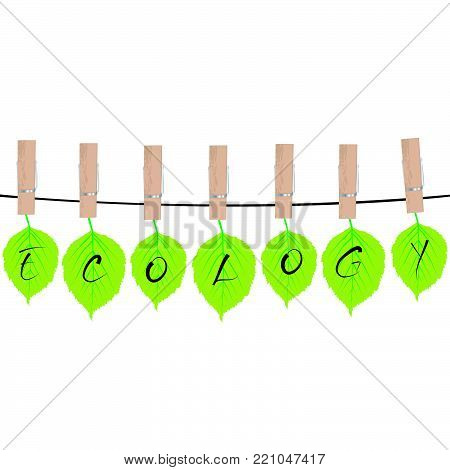 Ecology concept with green leaves hanging on rope  in cloth pegs