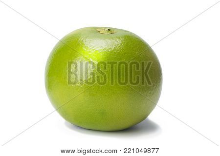 Sweetie green, citrus fruit, isolated on white with shadow