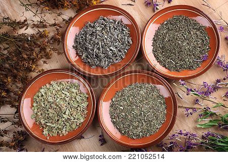 Medicinal herbs in clay saucers on wooden table