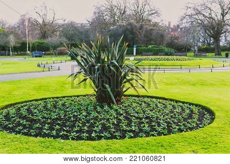 DUBLIN, IRELAND - January 6th, 2018: flower compositions in Saint Stephen's Green park in Dublin city centre on a calm, overcast and cold winter day
