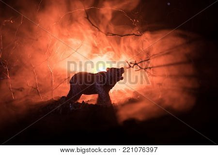 Angry Bear Behind The Fire Cloudy Sky. The Silhouette Of A Bear In Foggy Forest Dark Background. Sel