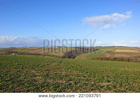 Winter Hilltop Road