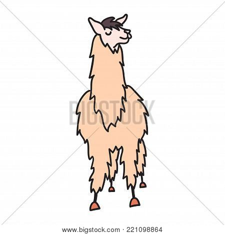 Vector illustration of cute character south America lama. Isolated outline cartoon baby llama. Hand drawn Peru animal guanaco, alpaca, vicuna. Drawing for print, fabric, textile, poster etc