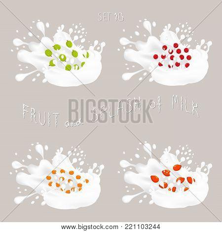 Vector icon illustration logo for fruit gooseberry, cranberry, rose hip, sea buckthorn, splash of drop white milk. Cranberry pattern of drip Milk. Eat fruits gooseberries,cranberries,rosehip in milk.
