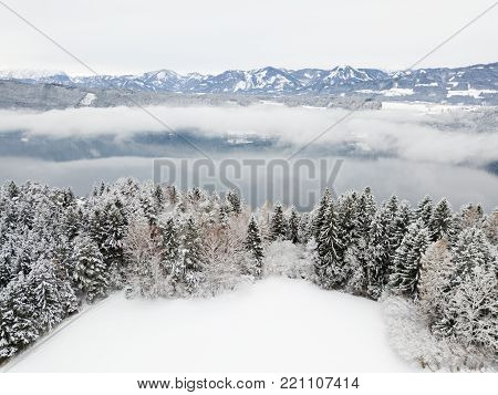 Winter landscape, snow covered field, pine trees, high mountain background