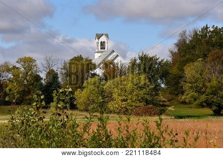 The steeple of a white church appears behind a grove of trees and an unharvested soybean field.