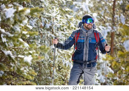 Sportsman hiking through wood with sticks for hiking