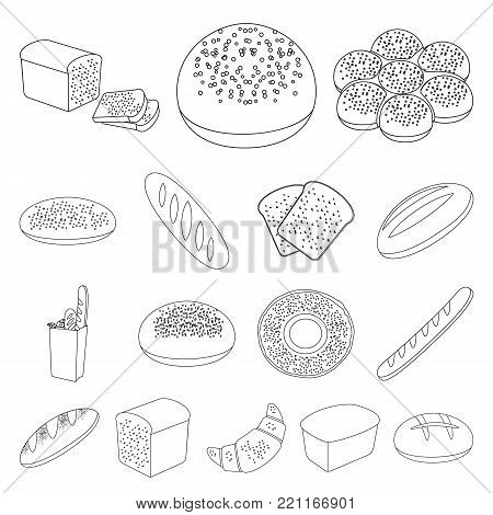 Types of bread outline icons in set collection for design. Bakery products vector symbol stock  illustration.