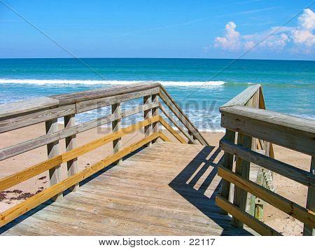 Tropical Beach Boardwalk