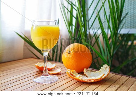 Tangerine peel with glass of orange juce on the background of a tropical house plant. Concept -  sunny day and health benefits.