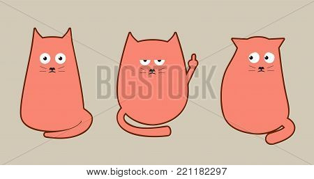 Three funny cats with different emotions. Indifference, fear, bewilderment, anger, fright and fuck off  finger  cat.