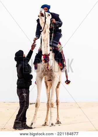 camel driver in the desert of sahara in Tunisia,Douz,In the 2008