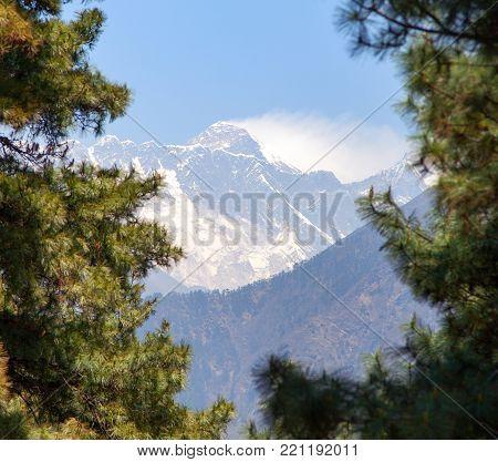 View of Mount Everest near Namche Bazar in the middle pine trees, Khumbu valley, Solukhumbu, Sagarmatha national park, Himalaya, Nepal