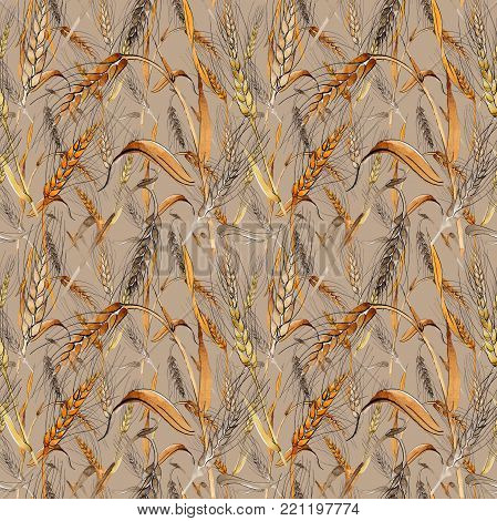 Wildflower spica flower pattern in a watercolor style. Full name of the plant: ear, spike, spica. Aquarelle wild flower for background, texture, wrapper pattern, frame or border.
