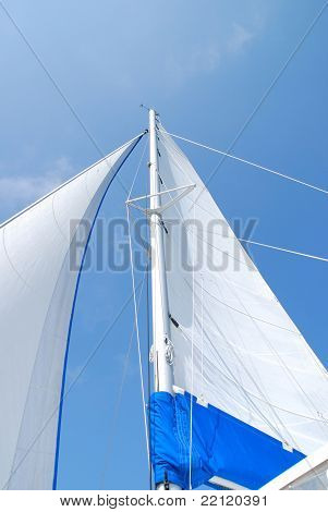 Sail in the blue sky