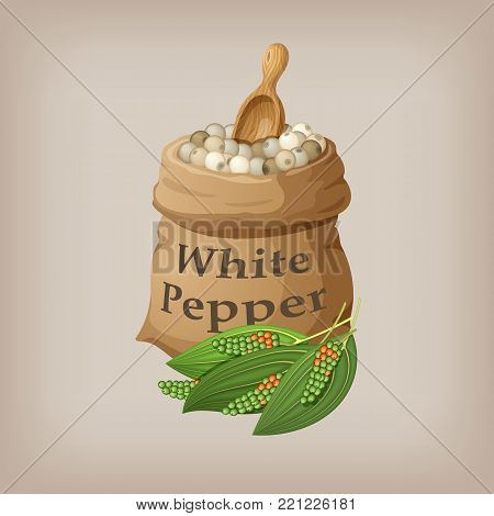 White pepper corn in the bag. Vector illustration EPS10