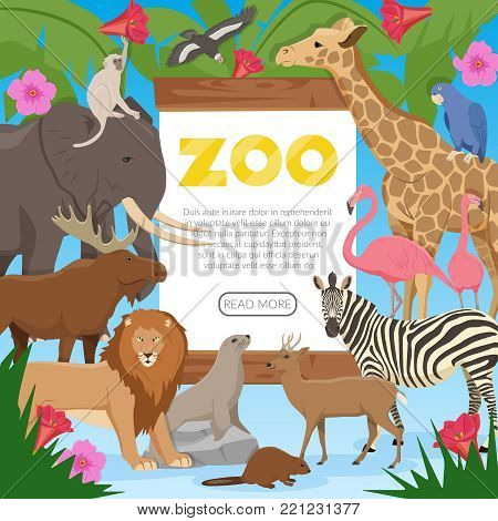 Zoo poster with cartoon collection of exotic wild animals inhabitants of tropical jungle savannah and tundra flat vector illustration