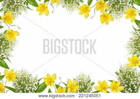 The branch of lilies of the valley flowers isolated on white background. narcissus