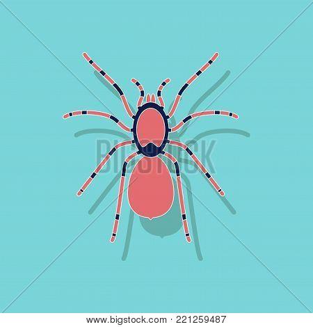 paper sticker on stylish background of tarantula