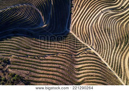 Aerial view of the vineyards in the hills of the douro valley; Concept for travel in Portugal and in the Douro Valley, visit Portugal and most beautiful places in Portugal