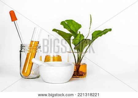 Science glasswear with oil laboratory testing with organic natural herbal clean energy business and environmentally friendly.