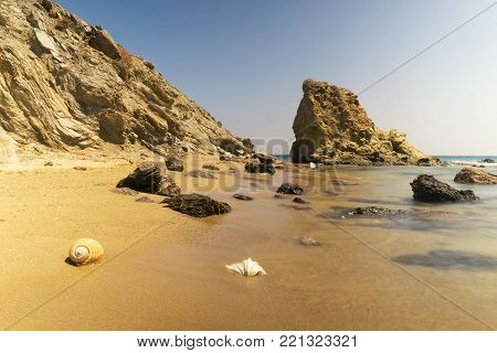 Lolantonis beach in Paros island in Greece with two seashells at the foreground.