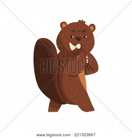 Cartoon scheming beaver with brown fur, little ears, shaped tail and big teeth. Forest rodent character with wily and cunning muzzle expression. Wild animal. Flat vector illustration isolated on white