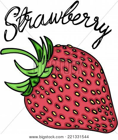 Scalable vectorial representing a sweet red strawberry, illustration isolated on white background.
