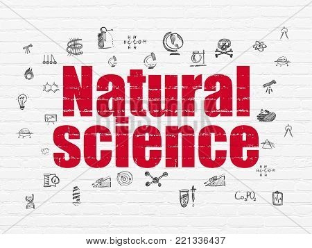 Science concept: Painted red text Natural Science on White Brick wall background with  Hand Drawn Science Icons