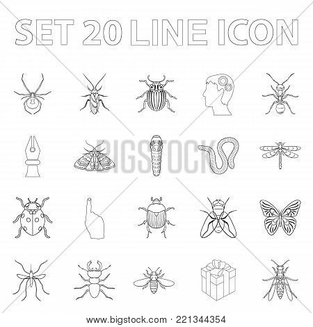 Different kinds of insects outline icons in set collection for design. Insect arthropod vector symbol stock  illustration.