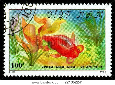 Ukraine - circa 2018: A postage stamp printed in Vietnam shows drawing fish Bubble Eye Goldfish or Carassius auratus auratus. Series: Fish - Goldfish, Veil-tailed. Circa 1990.