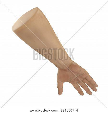 man hands on white background. 3D illustration