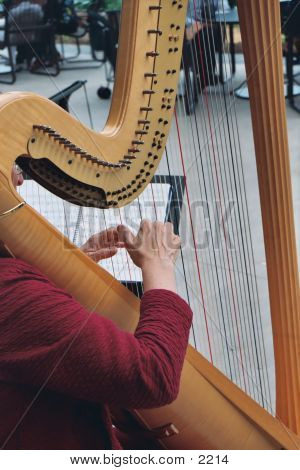 Hands On A Harp