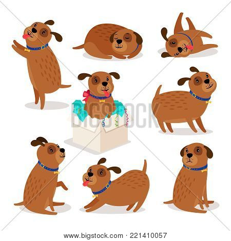 Puppy character. Brown funny cartoon dog activities isolated on white background, vector illustration