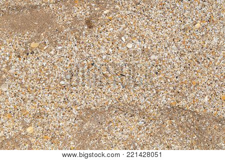 Beach Texture. Wet Sand Top View. Background.